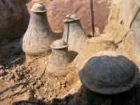 W-Grochowiskach-odnaleziono-grób-z-pięcioma-dobrze-zachowanymi-naczyniami